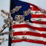 US Fiancée Visa